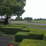 Hoveniersbedrijf Boskoop en Utrecht