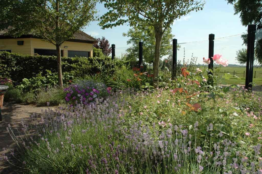 Bloem En Tuin : Bloementuin aanleggen onderhouden & beplanten hortivorm hoveniers