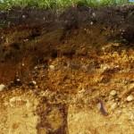 Dwarsprofiel voor bodemonderzoek
