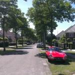 GWW groenvoorziening in wijk