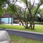 Amelanchiers in tuin te Bosch en Duin.