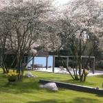 Wellness tuin te Bosch en Duin