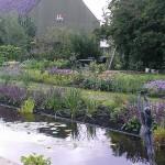 Vaste planten border na 3 maanden te Ouderkerk aan den IJssel