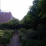 Tuin bij hoekwoning De Meern