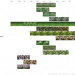 Bloeikalender beplantingsplan